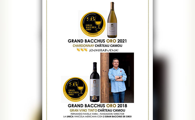Mexican Wine Awarded in International Competition