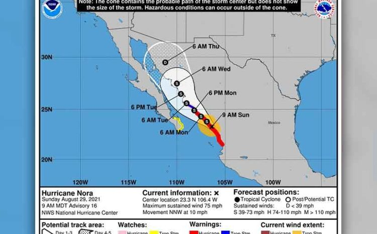 We Dodged Hurricane Nora!