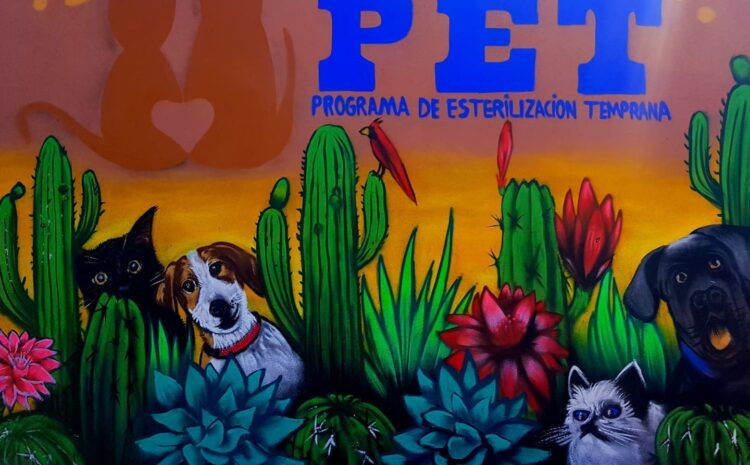 Local Organization Opens New Dog Shelter